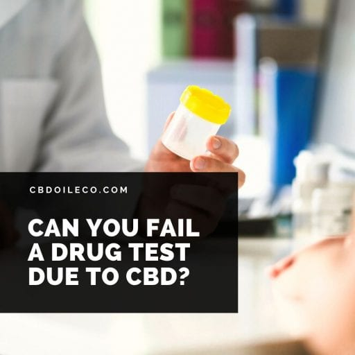 Can You Fail A Drug Test Due To CBD Oil?