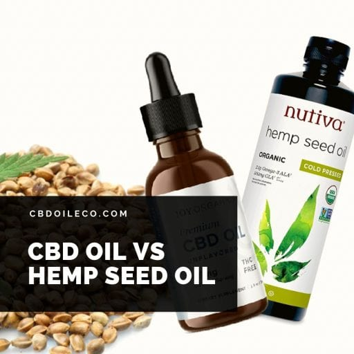 CBD Oil vs Hemp Oil – The Difference