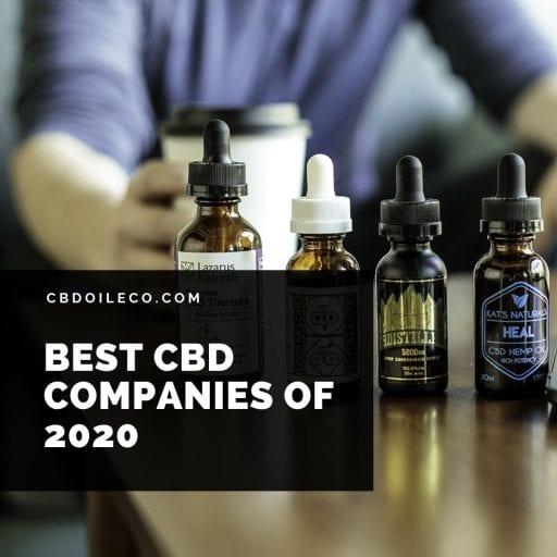 Best CBD Companies Of 2020 [Top 3 Picks]