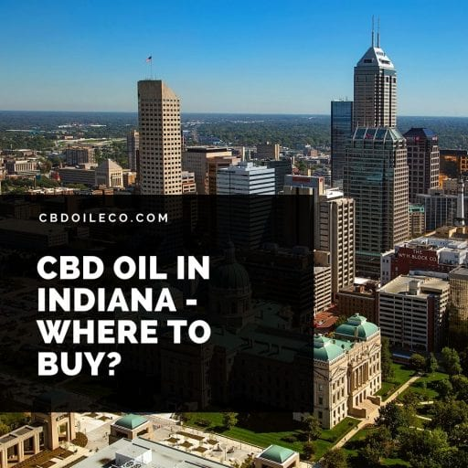 CBD Oil Indiana – Where To Buy?