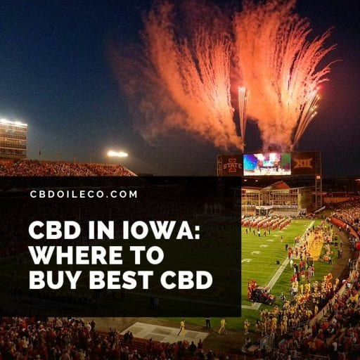 CBD Oil Iowa – How And Where To Buy