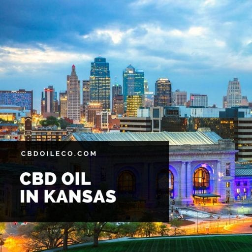 CBD Oil In Kansas – Best Places To Shop