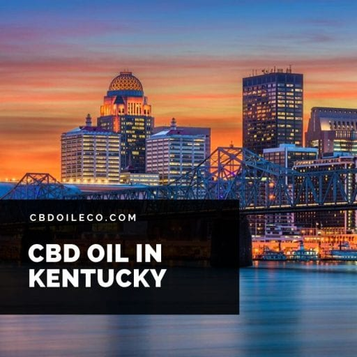 CBD Oil Kentucky – Where To Buy CBD