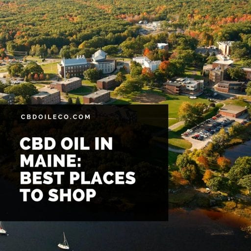 CBD Oil In Maine: Best Places To Shop