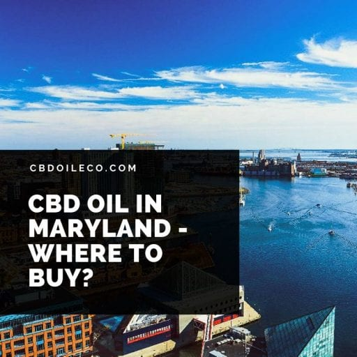 CBD Oil In Maryland – Where To Buy?