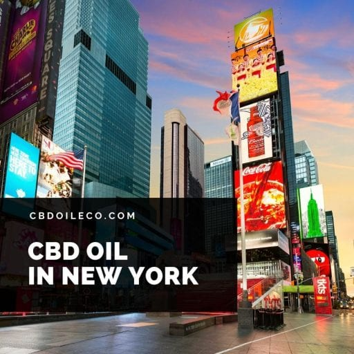 CBD Oil New York – A Buyer's Guide