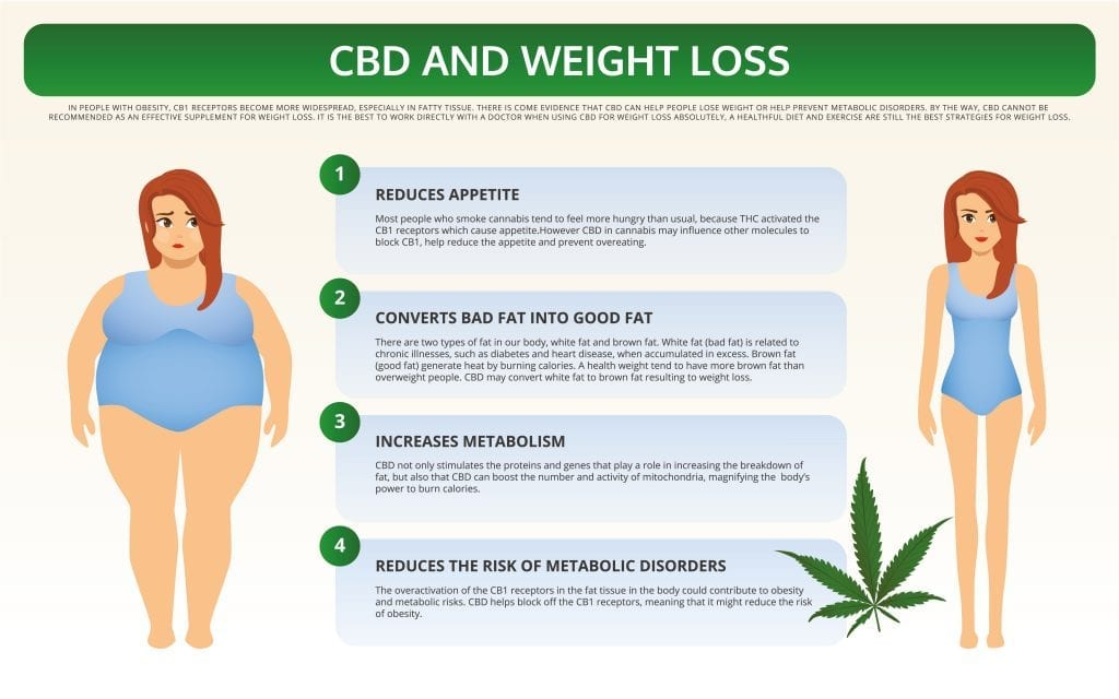 CBD effect on weight loss