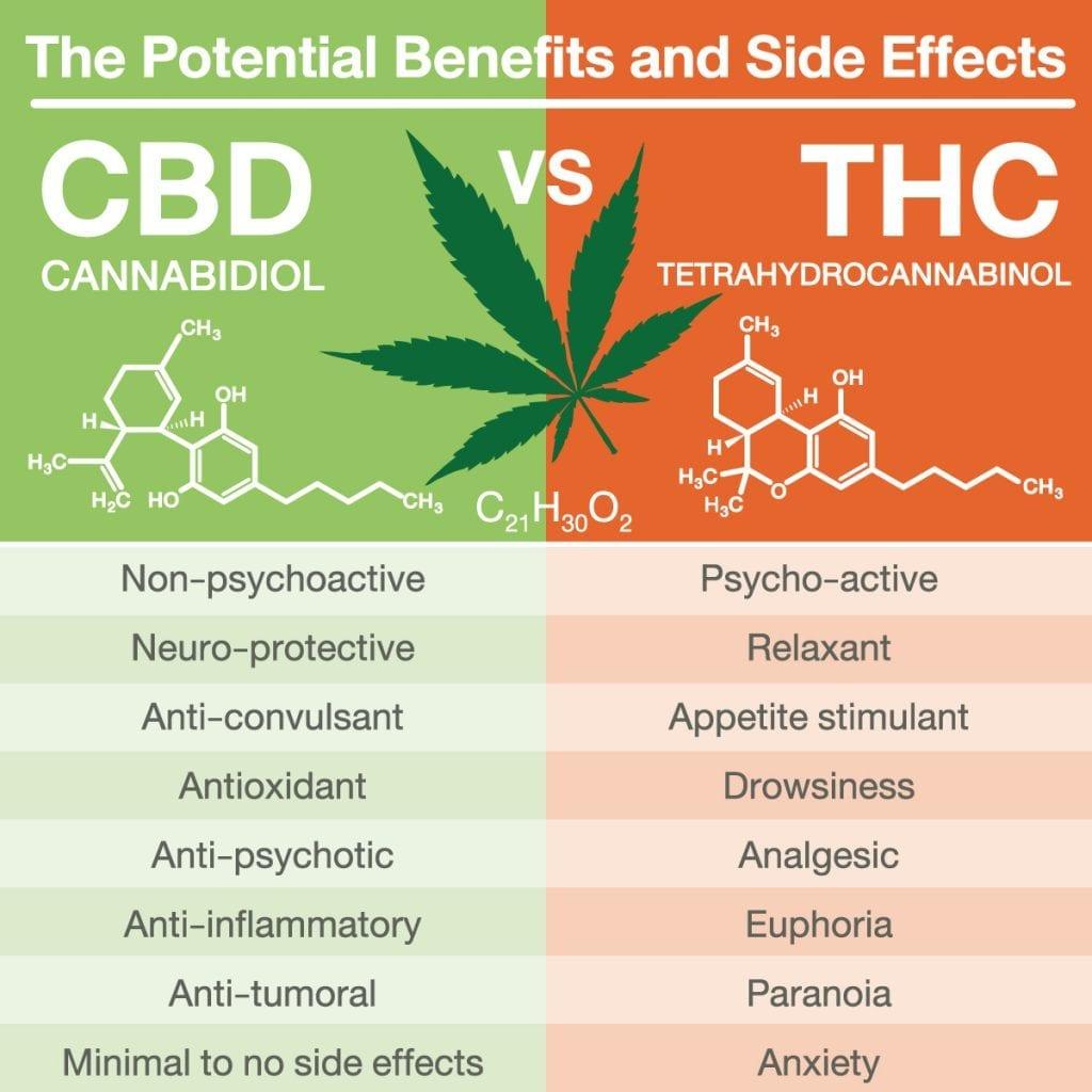 CBD effects vs THC effects